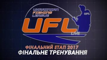 3_2017_финальная тренировка